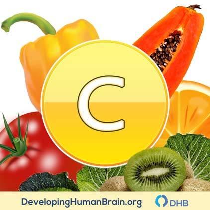 vitamin c for focus