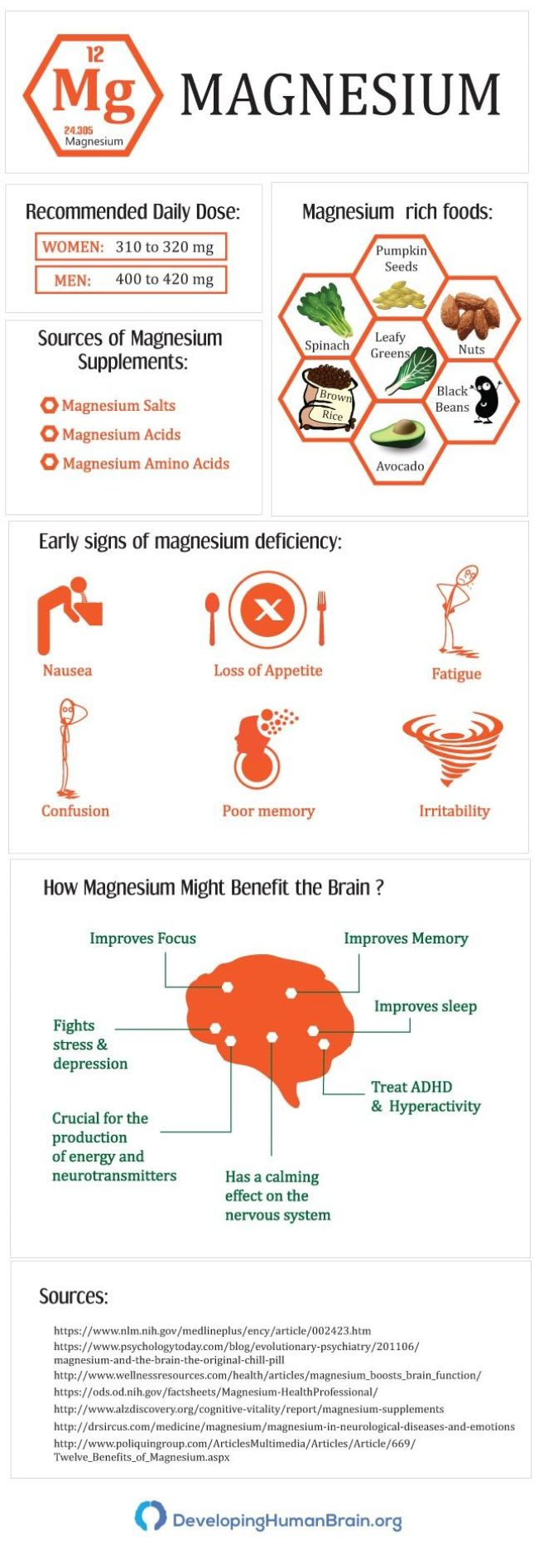 Magnesium and the Brain infographic