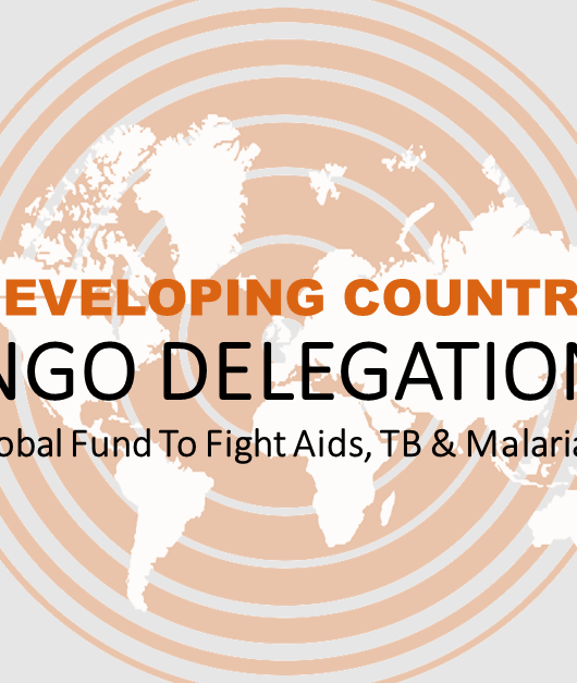 We are recruiting new members of the Developing Country NGO Delegation