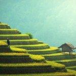 Quelques bonnes raisons de visiter Bali