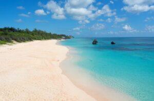 la_plage_de_sable_rose_de_bermudes