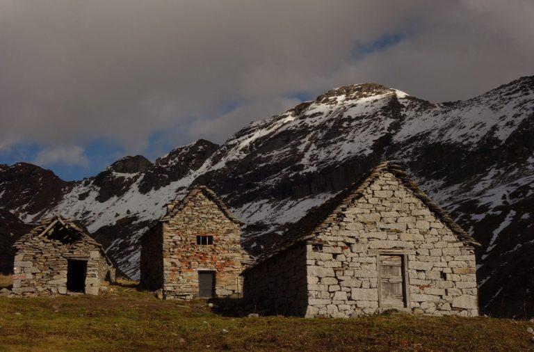Read more about the article Di pietre, di fiori, di nevi: giro all'Alpe di Pojala