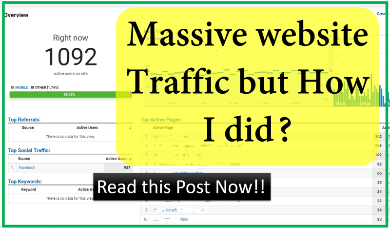 Massive website Traffic but How I did
