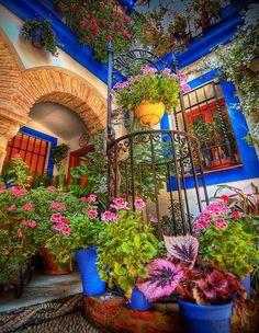 La Fiesta de los Patios de Córdoba