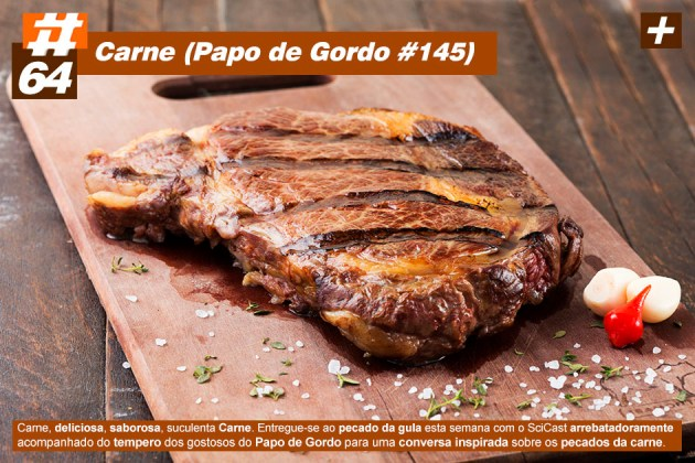 Scicast #64: Carne (Papo de Gordo #145)