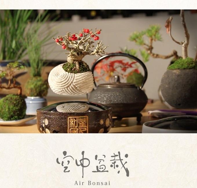 Air Bonsai, o projeto que parece ter saído de Avatar