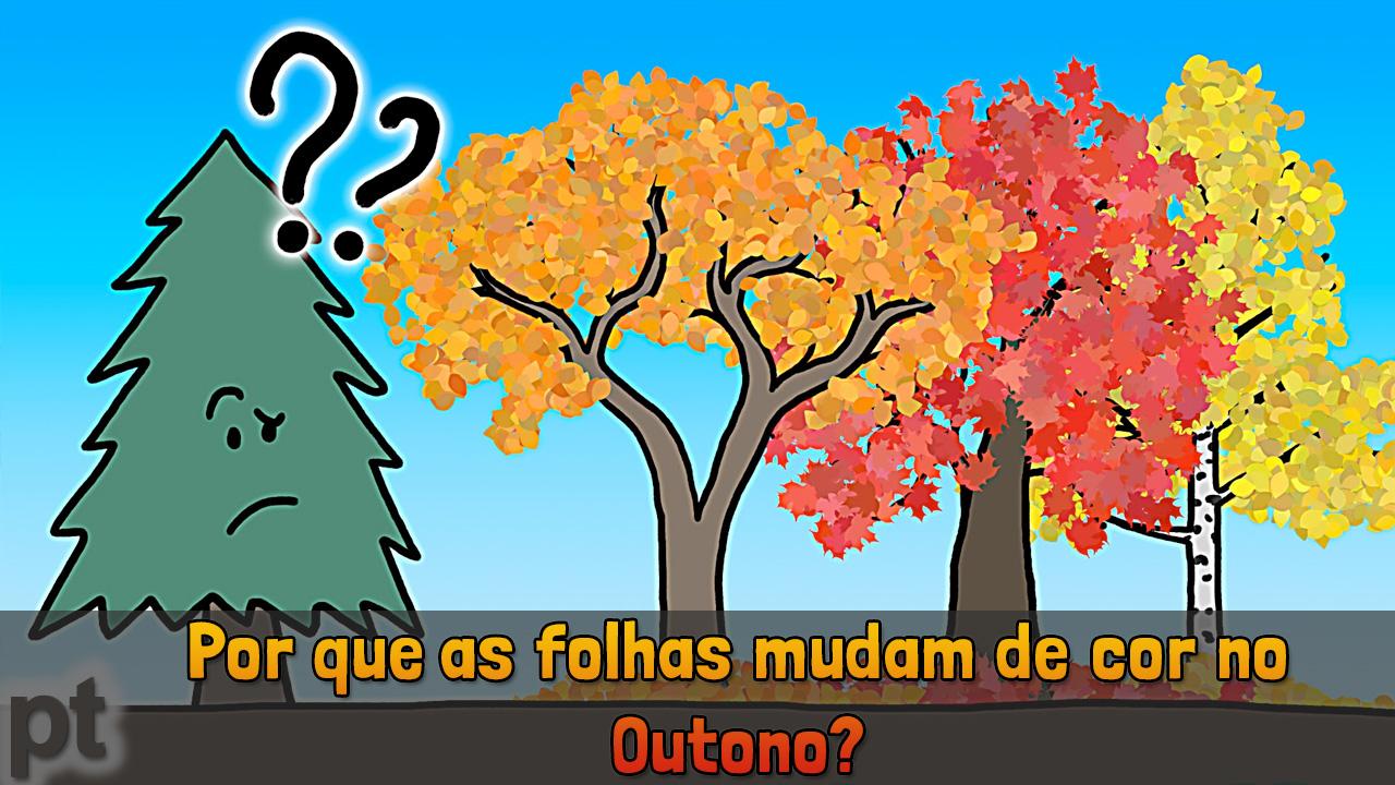 Minuto da Terra: Por que as folhas mudam de cor no outono?