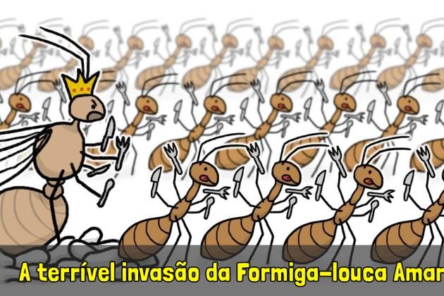 Minuto da Terra: A terrível invasão da Formiga-louca Amarela!