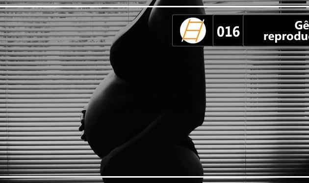 Chute 016 – Gênero e reprodução humana (Elas Chutando a Escada)