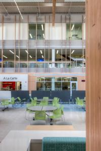 find out how to Design The Googleplex of faculties