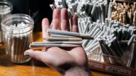Rebranding Pot: How Squares Are Sparking the subsequent massive industry