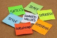 Values Based Hiring Equals Cultural Fit
