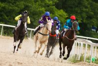 Can wearables make horseracing safer?
