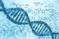 Scientists design the next-gen CRISPR for gene editing