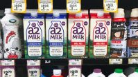 This Milk Company Is Willing To Bet You're Not Actually Lactose Intolerant