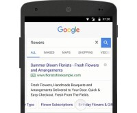 Google Sitelinks, Callouts, Snippets To Deliver More Information