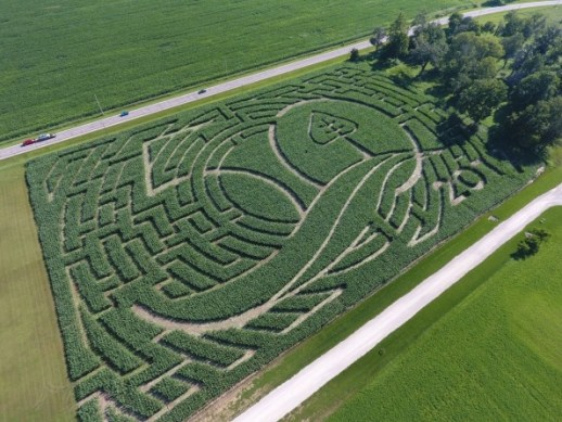 Inside The Surprisingly High-Tech World Of Corn Mazes | DeviceDaily.com