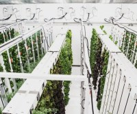 This Underground Urban Farm Also Heats The Building Above It