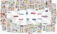 Making The Move To Modern CPG: 5 Factors To Consider