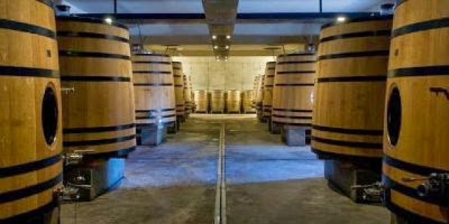 Sala de tinas de madera Bodegas Dominio do Bibei. Fuente: Vinissimus