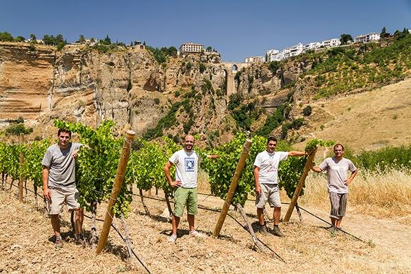 Equipo humano de Samsara Wines en sus viñedos. Fuente: Samsara Wines