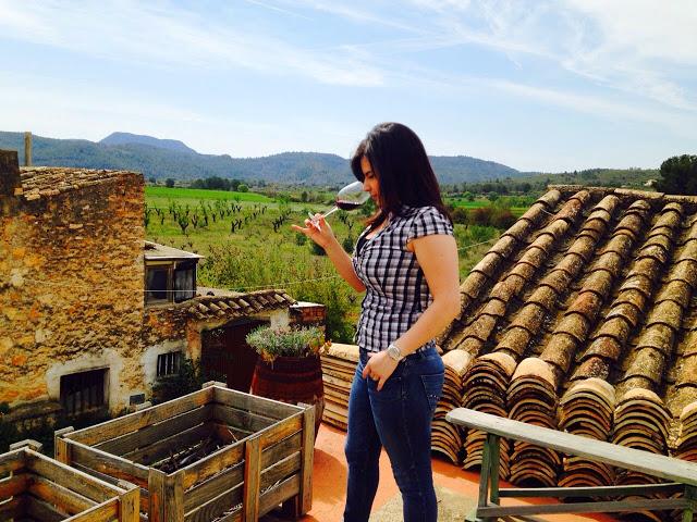"""Vistas desde la terraza """"sala de cata"""" en Bodegas Vicente Flors. Fuente: Manolo Martín- Lorente"""