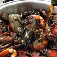 Receta de cangrejos de río picantes al vermut