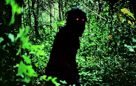 Tom Leins reviews Uncle Boonmee