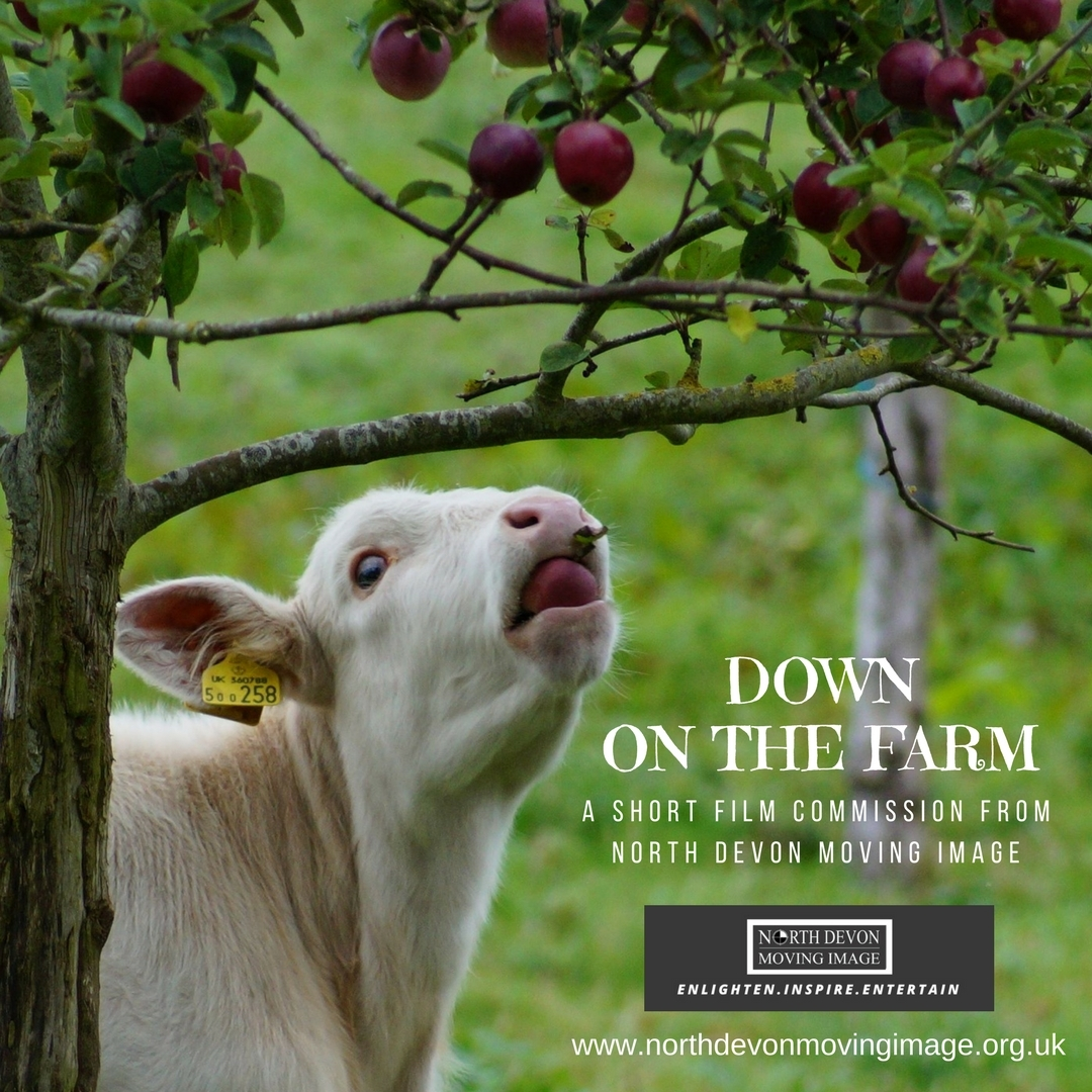 Down on the Farm - A North Devon short film commission for emerging or experienced filmmakers
