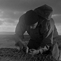 Bait: debut feature gets North American Premiere after Berlin