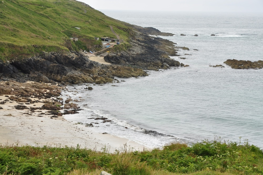 a rugged coast with a beach surrounded by greenery