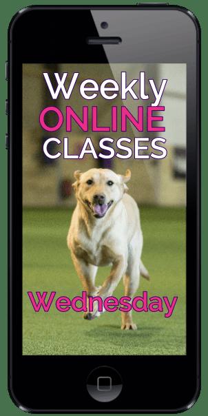 weekly online wednesday