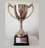 50m Backstroke - Junior Male - Liam Hancock Trophy