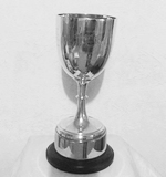 Swimmer of the Year - R H Freneh Trophy