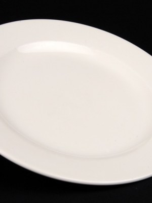 DINNER PLATE HIRE 10""