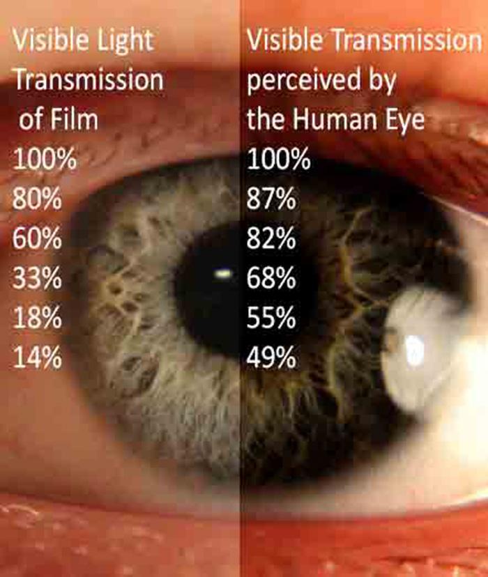 window film and the human eye's perception