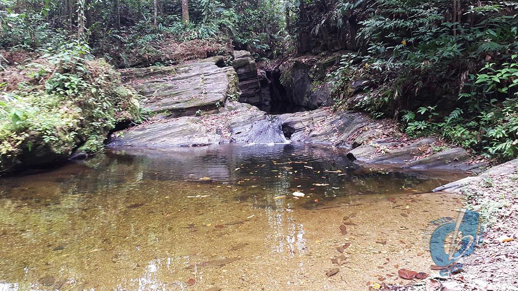 Rincon Basin
