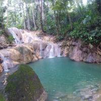 Aripo Waterfall