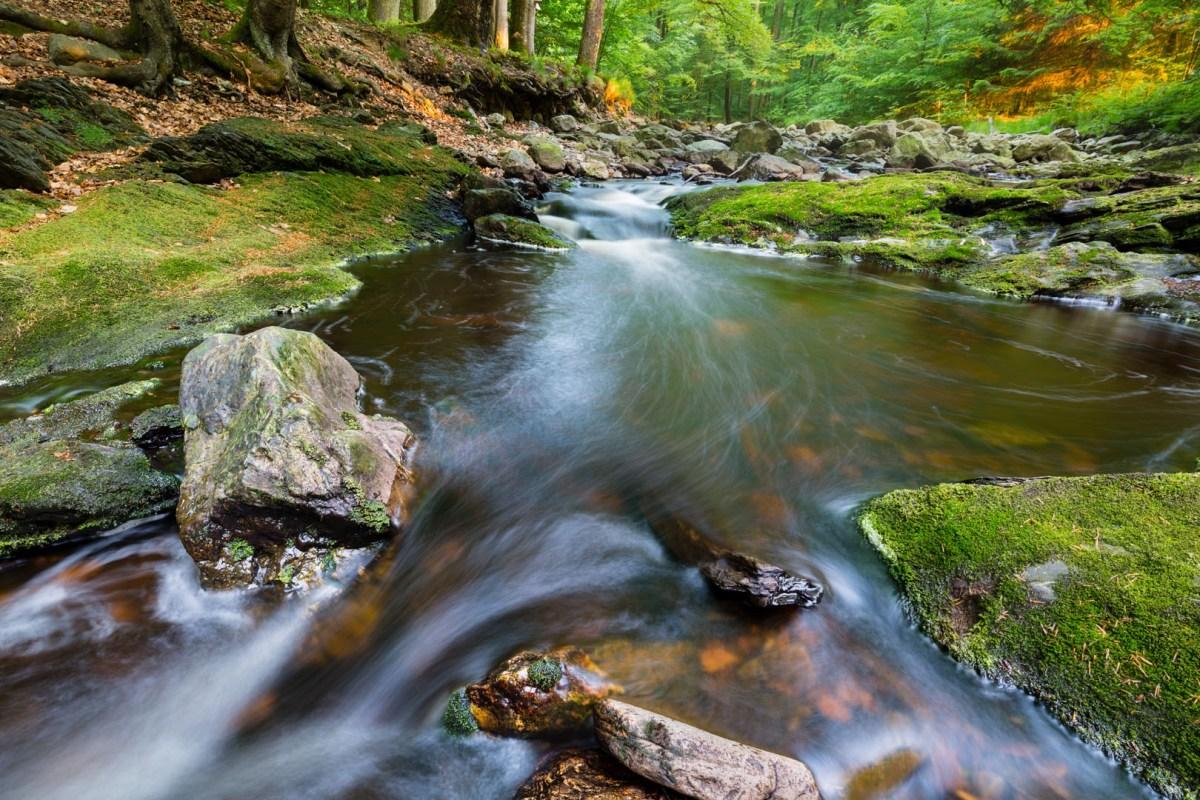 mountain-stream-in-evening-light