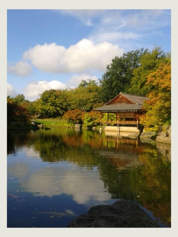Japanse Tuin 0
