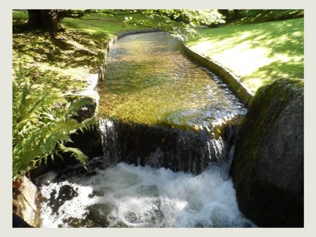 Japanse Tuin 1