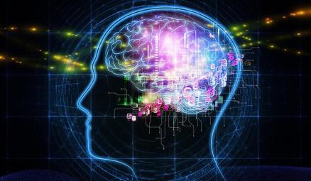 Levitin neemt ons mee in de wondere wereld van onze hersenen