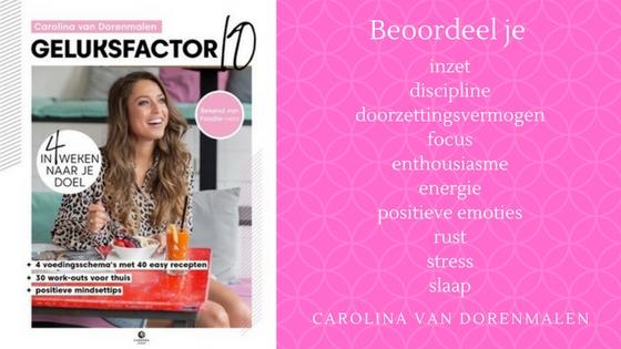 Beoordeel je inzet discipline doorzettingsvermogen focus enthousiasme energie positieve emoties rust stress slaap