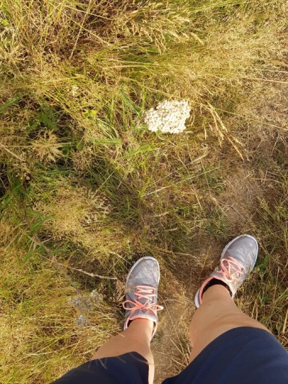 Troost van het lopen en als er niet gelopen wordt, dan troost van het stappen. Werkt bijna evengoed ! Maar het behoedt me wel voor blessures !