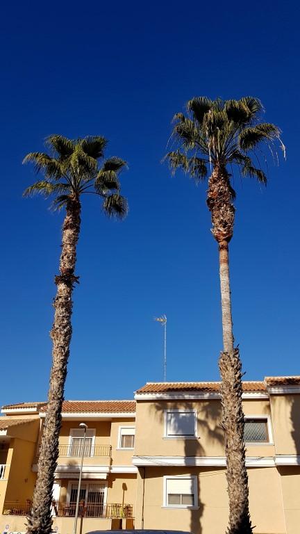 verhuizen naar Spanje