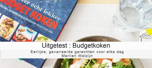 Budgetkoken Merlien Welzijn