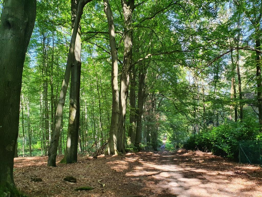 Wandelingen de Druivenstreek (Groene Gordel, Vlaams-Brabant) Aan de rand van het Zoniënwoud.