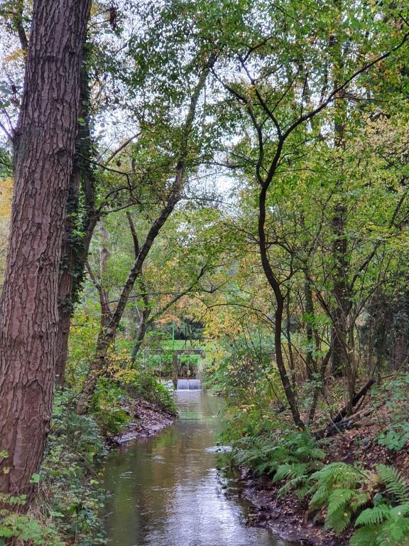Tal van routes in Bolderberg Heusden-Zolder. Het water is nooit ver weg.