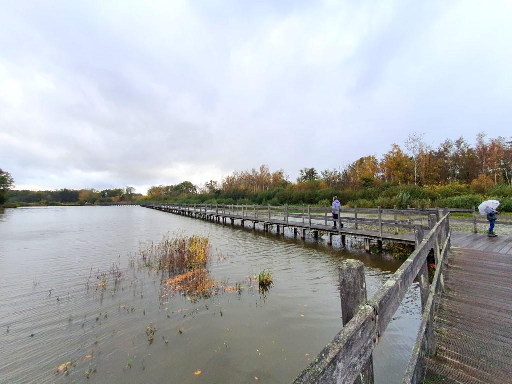 Lopen over het water Domein Bovy / Bolderberg
