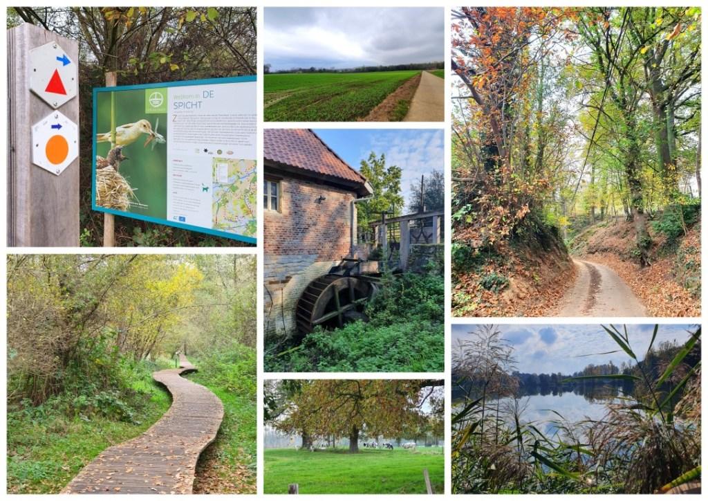Collage wandeling Natuurgebied De Spicht Lubbeek 9 km